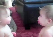 Hai em bé tranh nhau núm vú